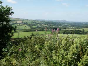 Photo from the walk - Dane Valley & Wincle from Rushton Spencer