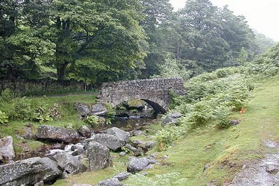 Photo from the walk - Hebden Gill from Hebden