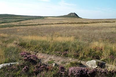 Photo from the walk - The moors of Penwith