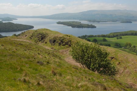 Conic Hill - final steep descent