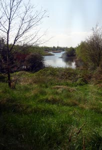 Horseshoe Nature Reserve beside the River Welland
