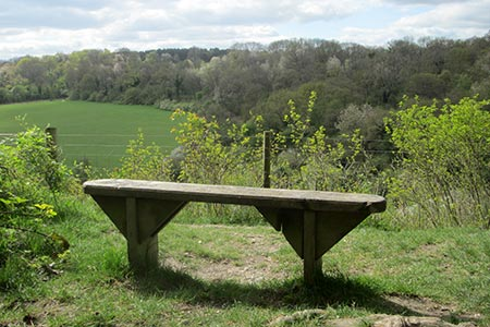 A seat with a view into Happy Valley, Coulsdon