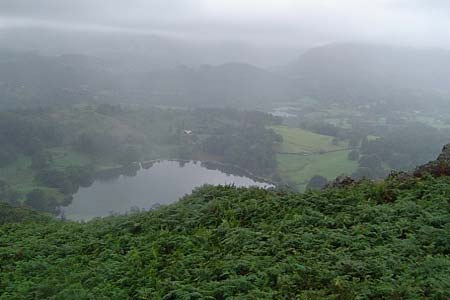 Little Loughrigg Tarn from above