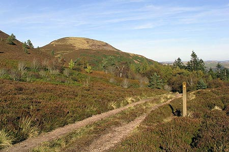 Photo from the walk - The Eildon Hills from Melrose