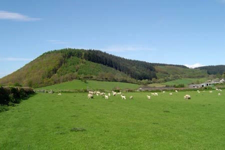 Photo from the walk - Kinsley Wood, Stowe and Offa's Dyke