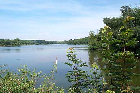 Photo from the walk - Greasley & Moorgreen Reservoir from Eastwood