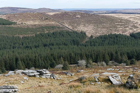 Photo from the walk - Bellever and Laughing Tors from Bellever