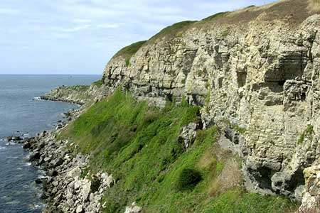 Photo from the walk - St Aldhelm's Head near Worth Matravers