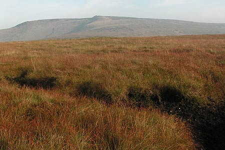 Photo from the walk - Bleaklow & Higher Shelf Stones from the Snake Pass