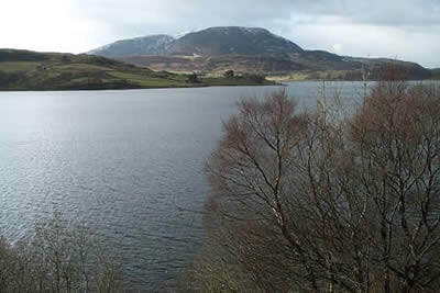 Photo from the walk - Arenig Fawr from Arenig near Llyn Celyn (Route A)