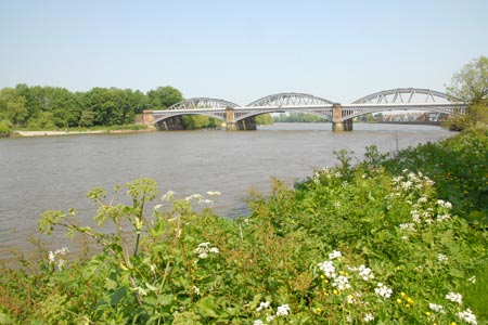 Photo from the walk - Barnes to Richmond along the Thames Path