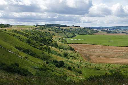 Photo from the walk - Dunstable Downs & Totternhoe from Robertson Corner
