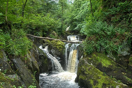 Photo from the walk - Ingleton Waterfalls Walk from Ingleton