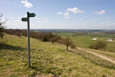 Photo from the walk - Five Knolls & Totternhoe from Robertson Corner