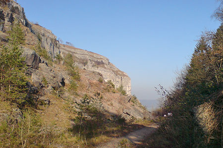 Photo from the walk - Whitbarrow Fell from Mill Side