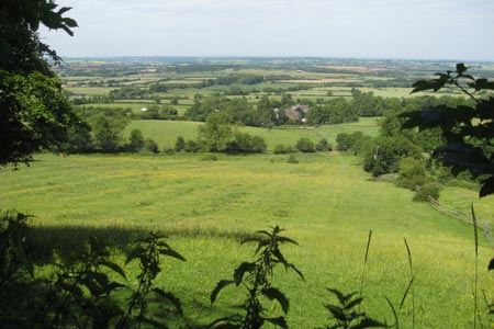 Photo from the walk - Edge Hill and Upton House