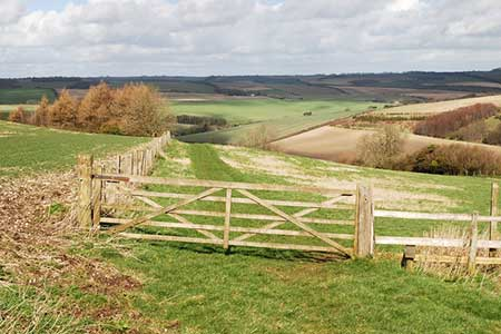 Photo from the walk - Bowerchalke & the Ox Drove from Broad Chalke