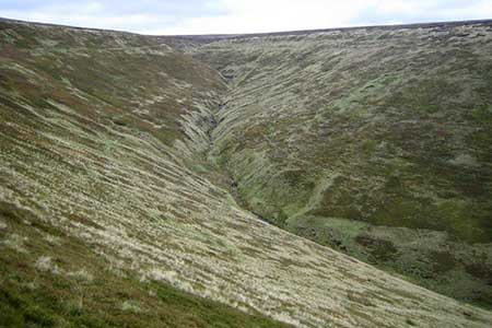 Photo from the walk - Oyster Clough & Blackden Edge from Birchen Clough