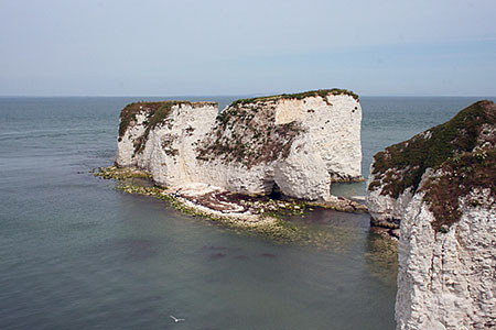Photo from the walk - Agglestone & Old Harry Rocks from Studland