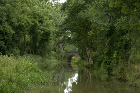 Photo from the walk - The Wey & Arun Canal, Loxwood