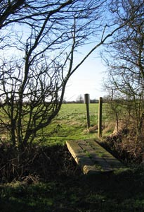 Photo from the walk - Buxhall to Drinkstone Green