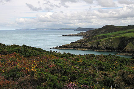 Photo from the walk - Carregwastad Point from Strumble Head