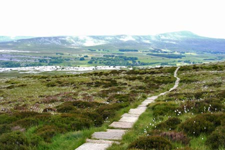 The paved path up the western cliffs of Ingleborough