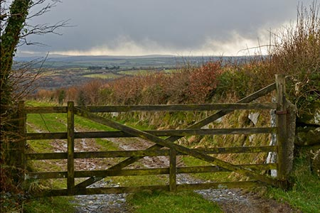 Photo from the walk - Berry Down from St Neot