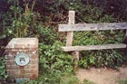 Photo from the walk - Upper Beeding to Washington by the South Downs Way